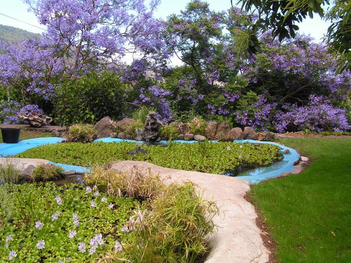 jardin de la Finca
